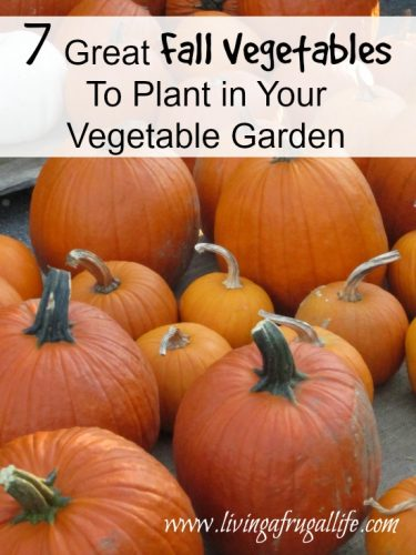 7 Great Fall Vegetables To Plant in Your Vegetable Garden